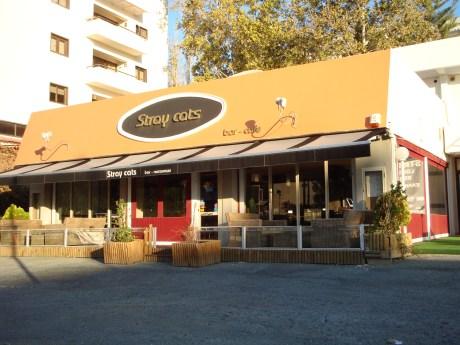 Stray Cats Bar Restaurant