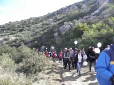 Orchid Walk 2012 is underway