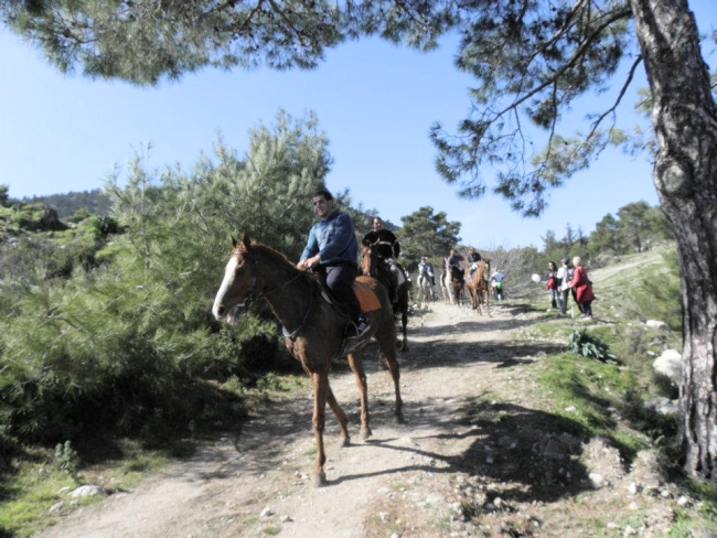 Horse riders join the Orchid Walk 2012