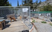 New cages built with donations