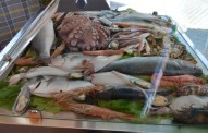 Sea Food at the at the Castle Restaurant