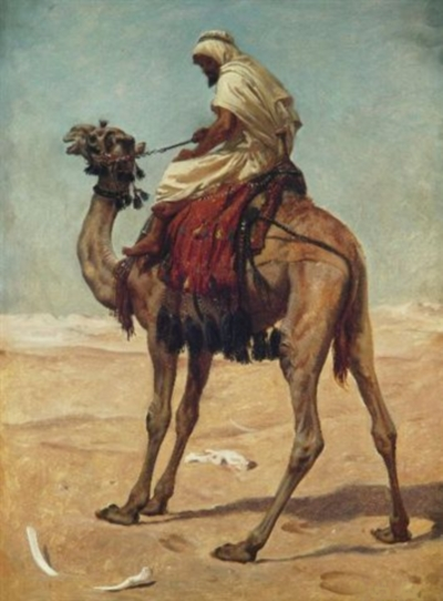 Arab scout on a camel