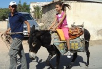 Donkey Rides - Picture courtesy of Eco Tourism Cyprus