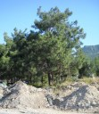 Rubble, Rubbish and Ruination of Natural Beauty in North Cyprus