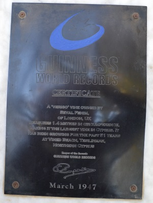 Guinness World Record - Vine