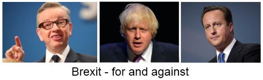 Brexit for and against