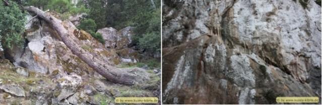pics-14-15-eerie-area