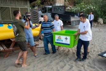 Meritta Sea Turtle released back into the sea (1)