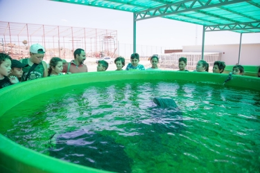 Taskent Wildlife Rescue and Rehabilitation Centre 2 (1)