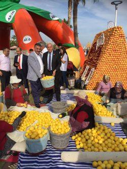 Cemal Redif at 8th International Citrus Festival (1)