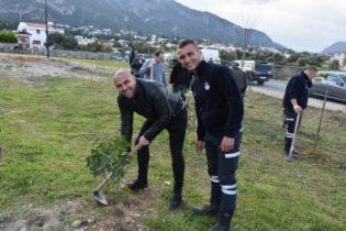 Girne Municipal employees planted seedlings 1 (3)