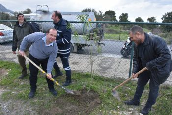 Girne Municipal employees planted seedlings 1 (7)