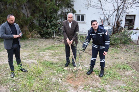 Belediye çalışanları fidan dikti (3)