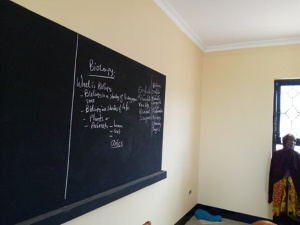 Secondary School 300 2