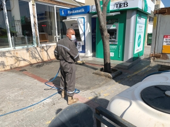 Girne Municipality spraying continues (7)