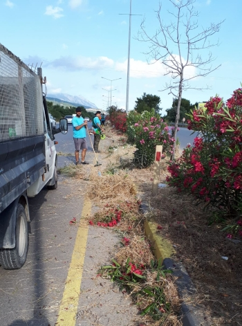 Cleaning Work Continues on Girne West Ring Road (1)