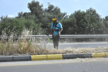 Cleaning Work Continues on Girne West Ring Road (5)