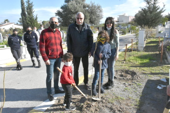 Girne Municipality Continues Tree Planting Works (1)