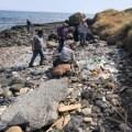 Esentepe coastline has been cleared (8)