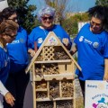 Rotary (RCKC) built a Insect Hotel