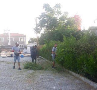 Girne school cleaning (6)