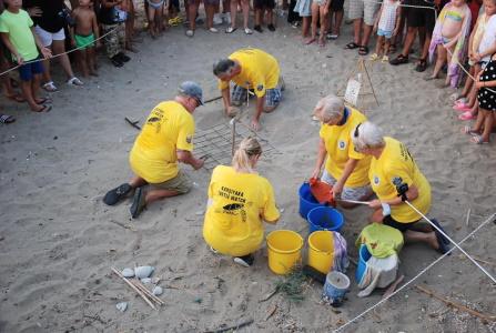 Karşıyaka Güzelyalı Beach Turtle project (8)