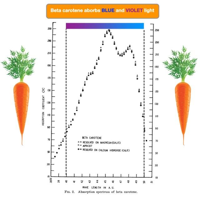 Clairial SPF50+ beta carotene