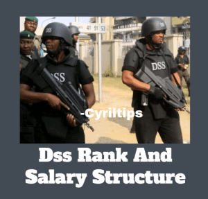 Nigerian SSS Ranks And Salary Structure 2020