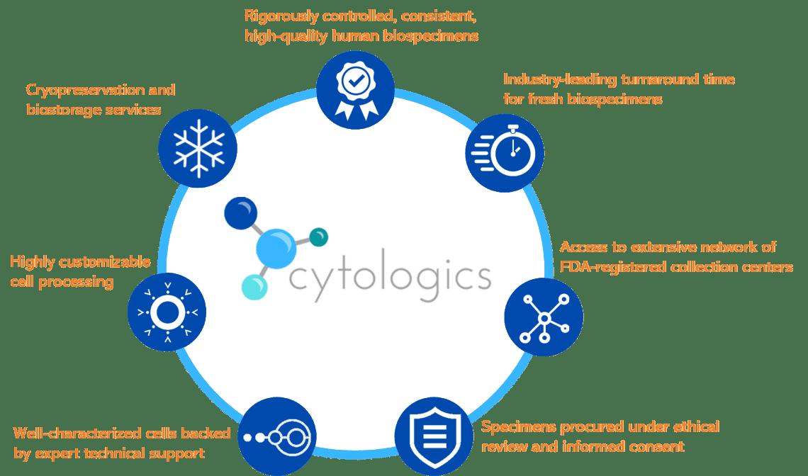 Cytologics- Buy CD3+ Pan T Cells