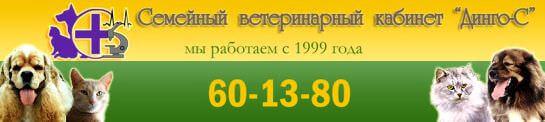 Ветеринарный кабинет «Динго-С» в Волгограде