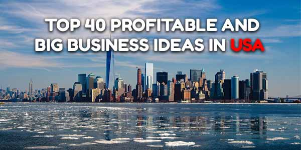 Big Business Ideas in USA