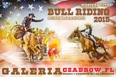 rodeo2015mini