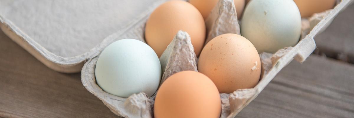Zdrowe jajka