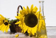 witamina e słonecznik