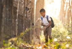 alergia u dzieci to poważny problem cywilizacyjny