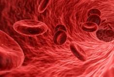 badanie krwi to obraz zdrowia