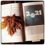 Podsumowanie 2020 roku & pomysły i plany