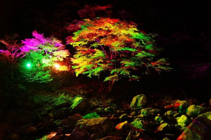 赤目四十八滝の紅葉 ライトアップ紅葉 滝 アクセス 時間 駐車場 料金 三重県名張市赤目町