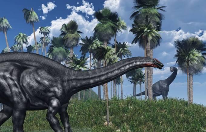アパトサウルスの画像