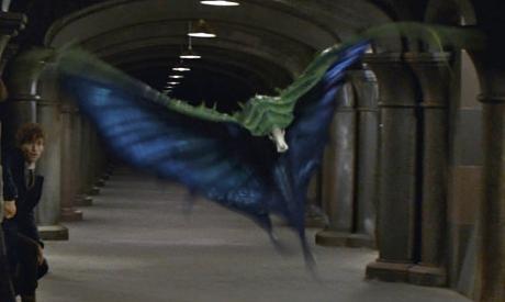 映画ファンタスティックビーストの登場する魔法生物スウーピング・イーブルの画像