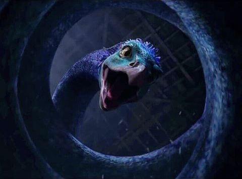 映画ファンタスティックビーストの登場する魔法生物オカミーの画像