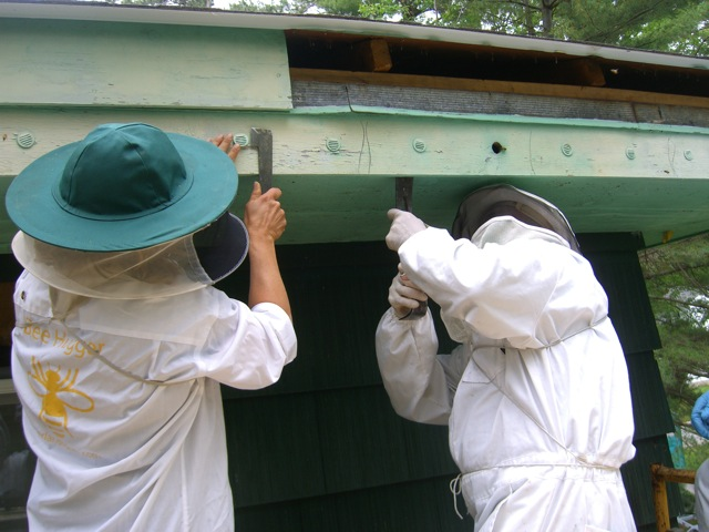 Erin (in Overland garb) and Chris continue the dismantling.