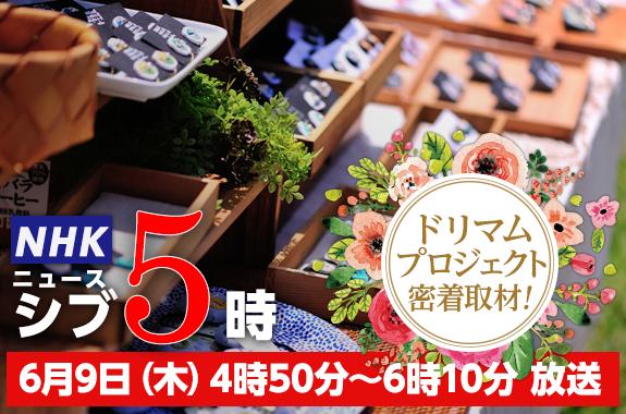NHK「ニュースシブ5時」ドリマム