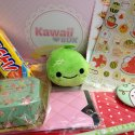 Kawaii Box! So Kawaii!!!