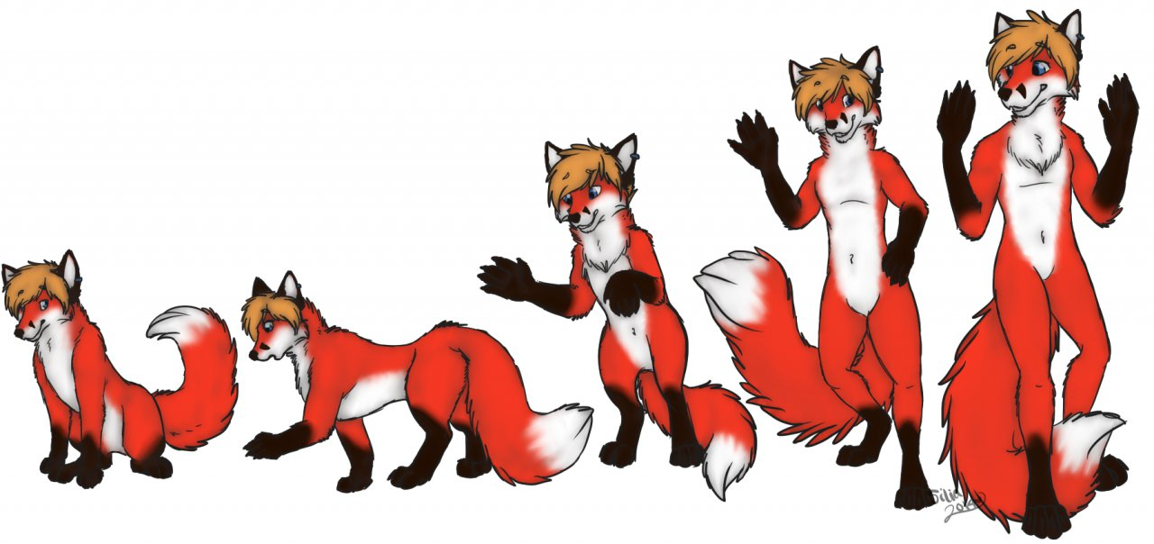 feral to anthro tf