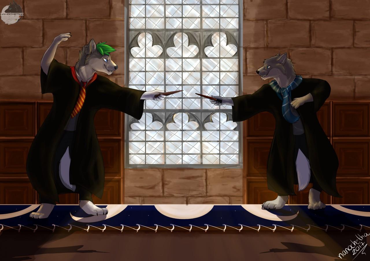 gryffindor vs ravenclaw dueling