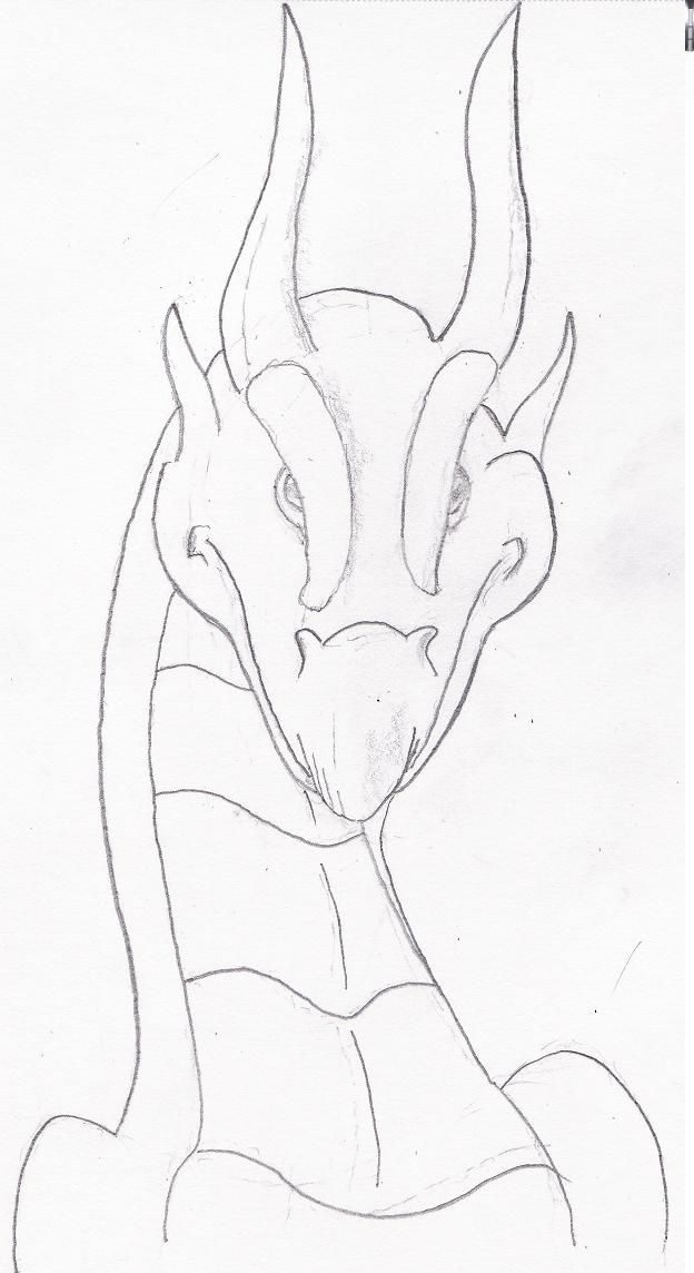Front Dragon Head Drawing : front, dragon, drawing, Dragon, Study, (front, View), Zigzak, Affinity, [dot]