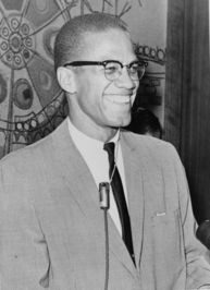 Insider View Who is Malcolm X? The Malcolm X Assassination