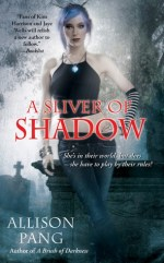 Book Review: Allison Pang's A Sliver of Shadow