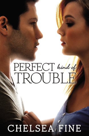 Review: Perfect Kind Of Trouble by Chelsea Fine